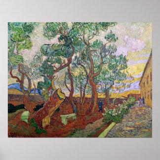 Vincent van Gogh   The Garden of St. Paul Hospital Poster
