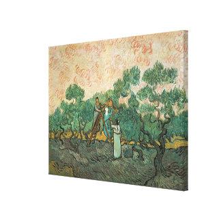 Vincent van Gogh | The Olive Pickers, Saint-Remy Canvas Print