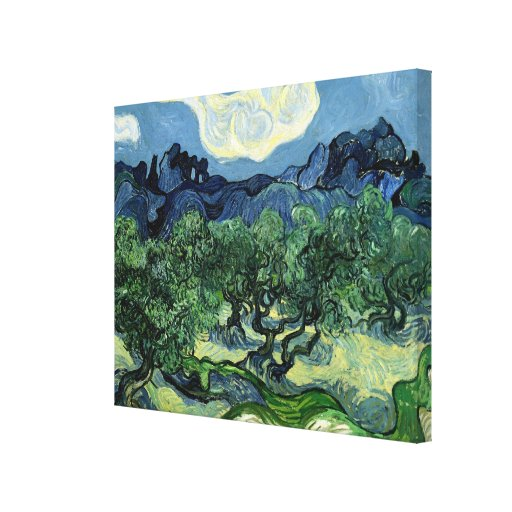 Vincent van Gogh's Olive Trees (1889) Stretched Canvas Print