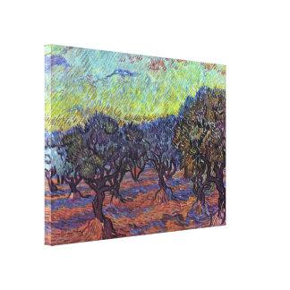 Vincent Willem van Gogh - olive Stretched Canvas Prints