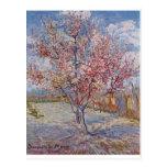 Vincent_Willem_van_Gogh Tarjeta Postal