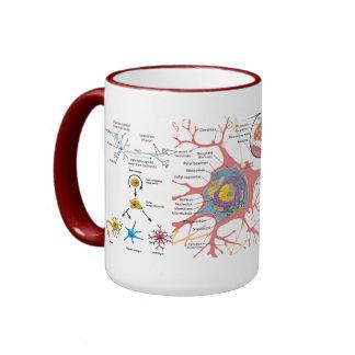 """¿""""Vínculo de la neurona? """" Taza A Dos Colores"""