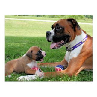 Vindy and Pups - Photo 95 Postcard