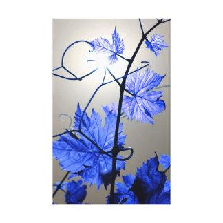 Vine Branch Canvas Print