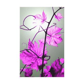 Vine Branch Canvas Prints