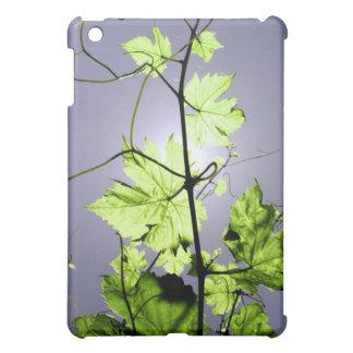 Vine branch iPad mini covers