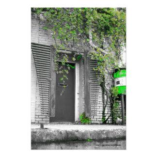 Vine Door Picture Print Photo Art