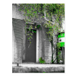 vine door, door picture, door images, exterior