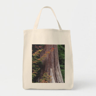 Vine Maple and Western Red Cedar Bag