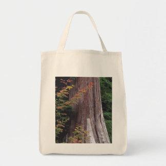 Vine Maple and Western Red Cedar Tote Bag