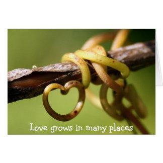 Vine of Love Card