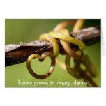 Vine of Love Greeting Card