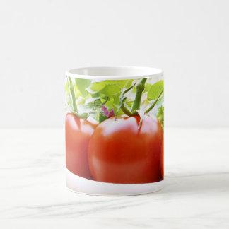 Vine tomatoes on a salad plate close up mug