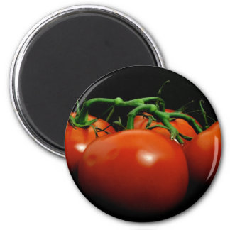 Vine Tomatos Refrigerator Magnet