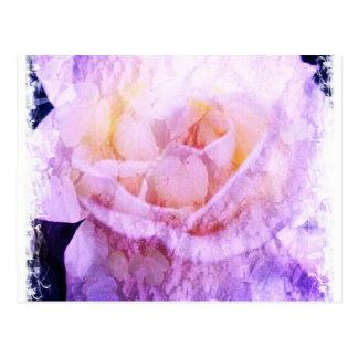 "Vined Rose ""Blank"" Postcard"