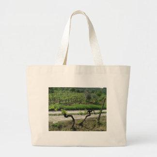 Viñedo de Chianti en la región Italia del vino de  Bolsa De Tela Grande