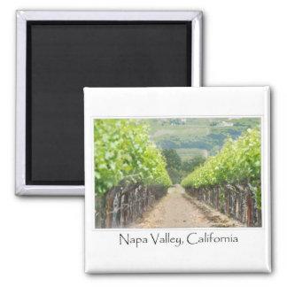 Viñedo de la primavera en Napa Valley California Imán Cuadrado