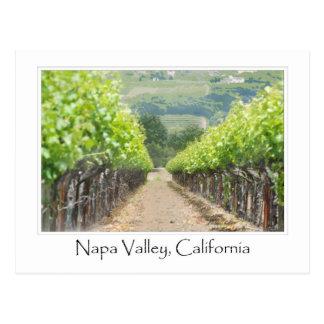 Viñedo de la primavera en Napa Valley California Postal