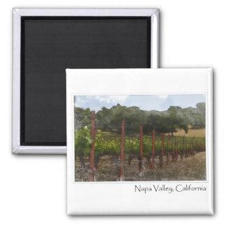 Viñedo de la uva de Napa Valley California Imán Cuadrado