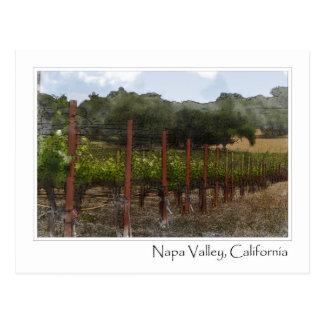 Viñedo de la uva de Napa Valley California Postales