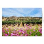 Viñedo de Napa Valley California Felicitaciones