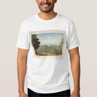 Viñedo del EL Pinal, el condado de San Joaquin Camisas