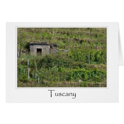 Viñedo del lagar de Toscana Italia Tarjeta De Felicitación