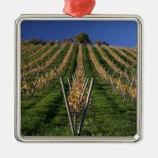 Viñedo del vino adorno navideño cuadrado de metal