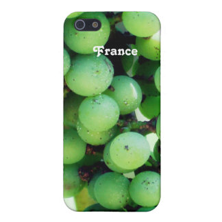 Viñedo en Francia iPhone 5 Fundas