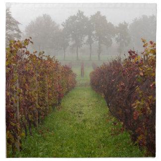 viñedo en la niebla en otoño servilleta imprimida