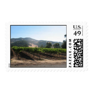 Viñedo en Napa Valley soleado, California Sellos Postales