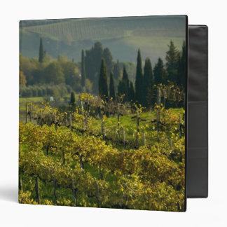 "Viñedo, Toscana, Italia Carpeta 1 1/2"""