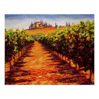 Viñedo toscano del vino poster