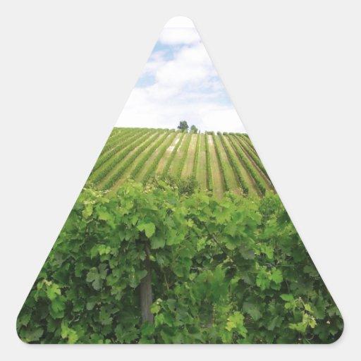 Viñedo - Vignoble (Burdeos - Francia) 01 Pegatina Triangular