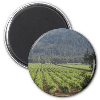 Viñedos de Napa Valley I Imán Redondo 5 Cm