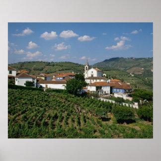 Viñedos, pueblo de San Miguel, el Duero Póster
