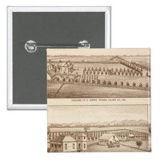 Viñedos, ranchos, Tulare Co, Calif Pin Cuadrado