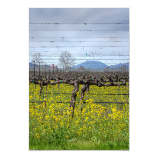 Vines And Wires Card