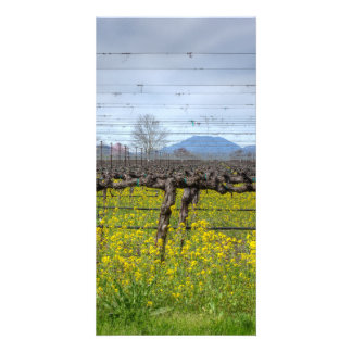 Vines And Wires Custom Photo Card