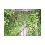 Vines and Wood Canvas Print