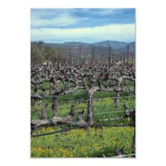 Vines in winter. Napa California. Card