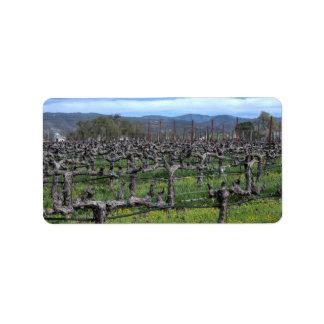 Vines in winter. Napa California. Custom Address Label