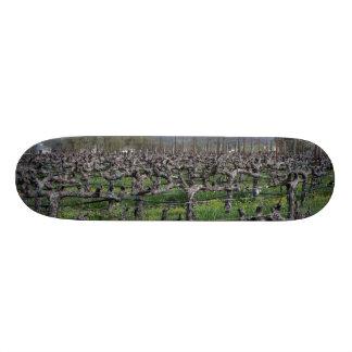 Vines In Winter Napa California Skateboard