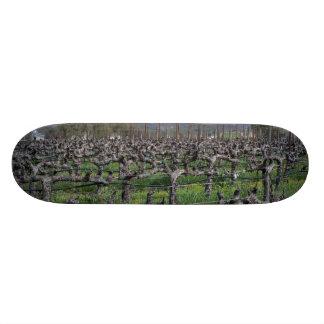 Vines In Winter Napa California Skate Board Decks