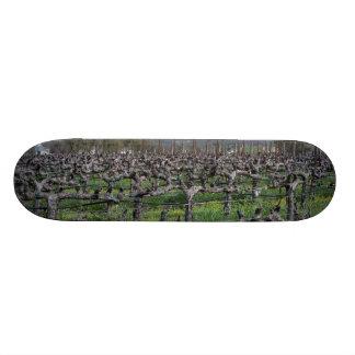 Vines In Winter Napa California Skate Board