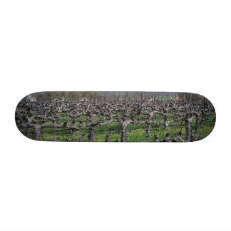 Vines In Winter Napa California Skateboard Decks