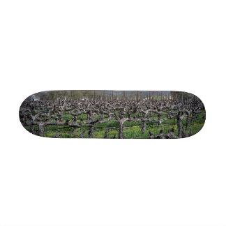 Vines In Winter Napa California Skateboard Deck
