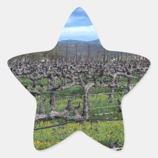 Vines In Winter Napa California Star Sticker