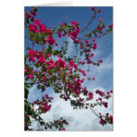 Vines to the Sky I Greeting Cards