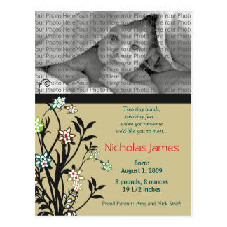 Viney Baby Birth Announcement Khaki Teal Post Card